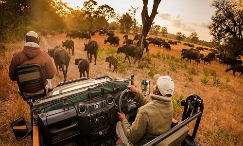 Paquete Turístico Explore Sudáfrica