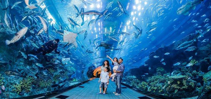 El acuario de Dubái