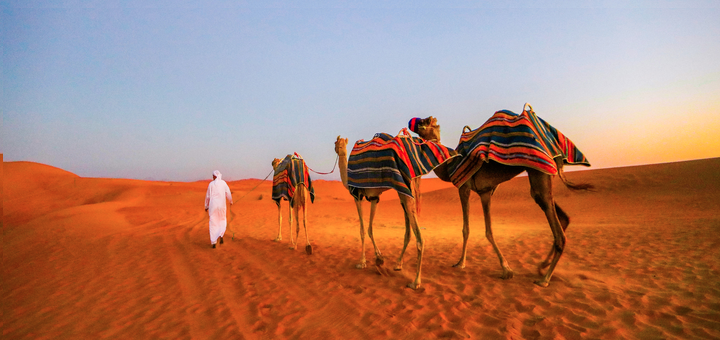 Reserva de conservación del desierto de Dubái