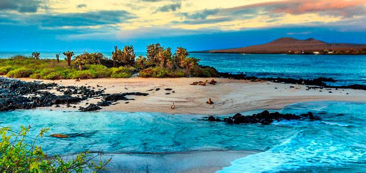 visitar islas galapagos