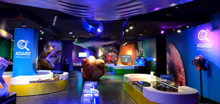 mejores lugares cancun acuario interactivo