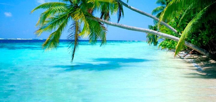 windsurfing en el caribe isla margarita