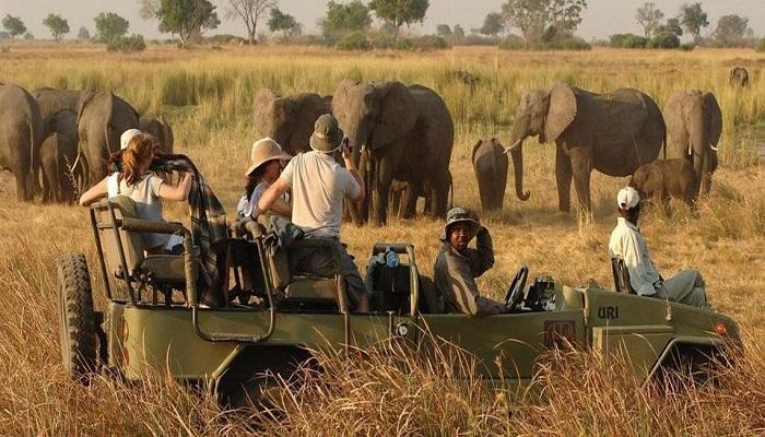 Paquete Parque Kruger