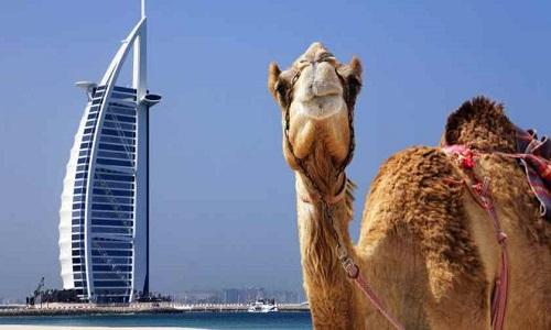 Paquete Turistico Dubai