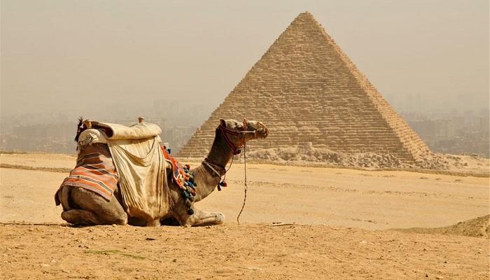 PaqueteEgipto